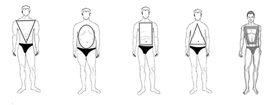 فرم بدن , شکل بدن